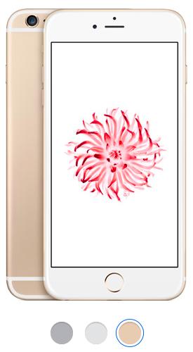 telefon iPhone 6+